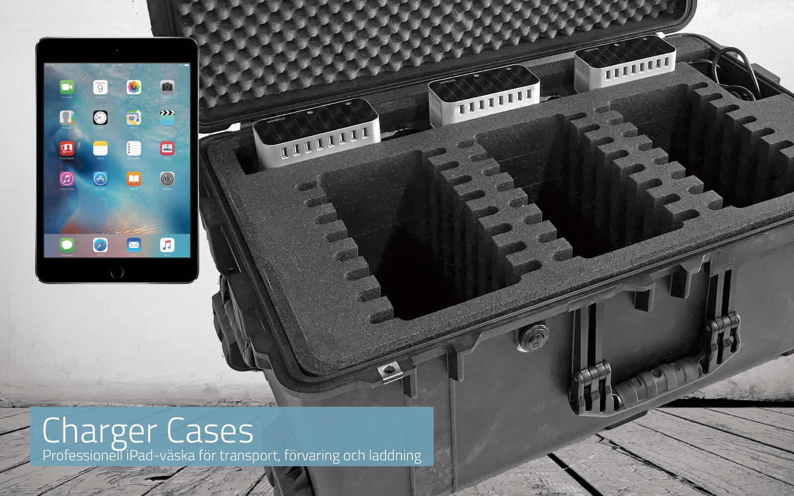 Charger Cases